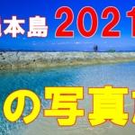 そうだ沖縄に行こう。冬の写真旅、20201年①。
